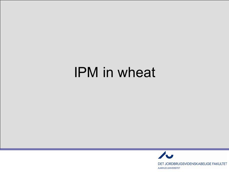 IPM in wheat