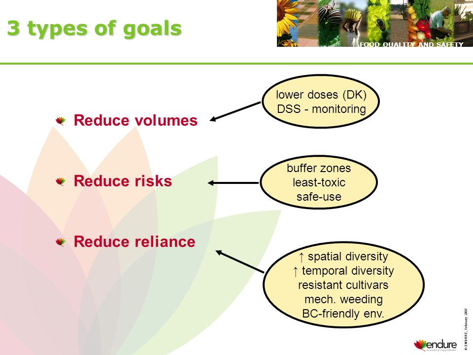 © ENDURE, February 2007 FOOD QUALITY AND SAFETY 3 types of goals Reduce volumes Reduce risks Reduce reliance lower doses (DK) DSS - monitoring buffer