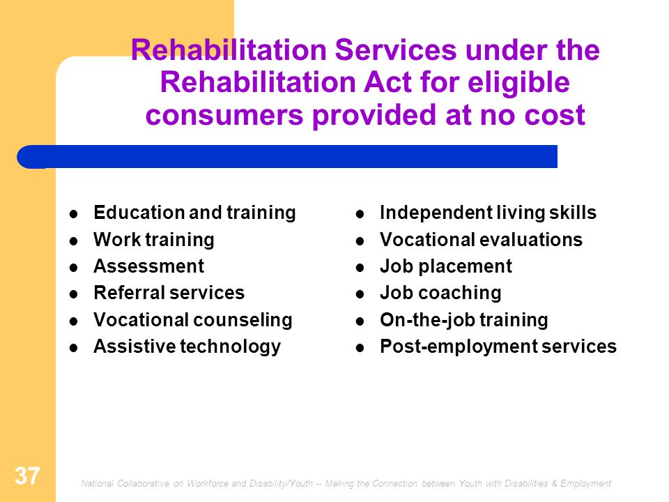 National Collaborative on Workforce and Disability/Youth -- Making the Connection between Youth with Disabilities & Employment 37 Rehabilitation Servi