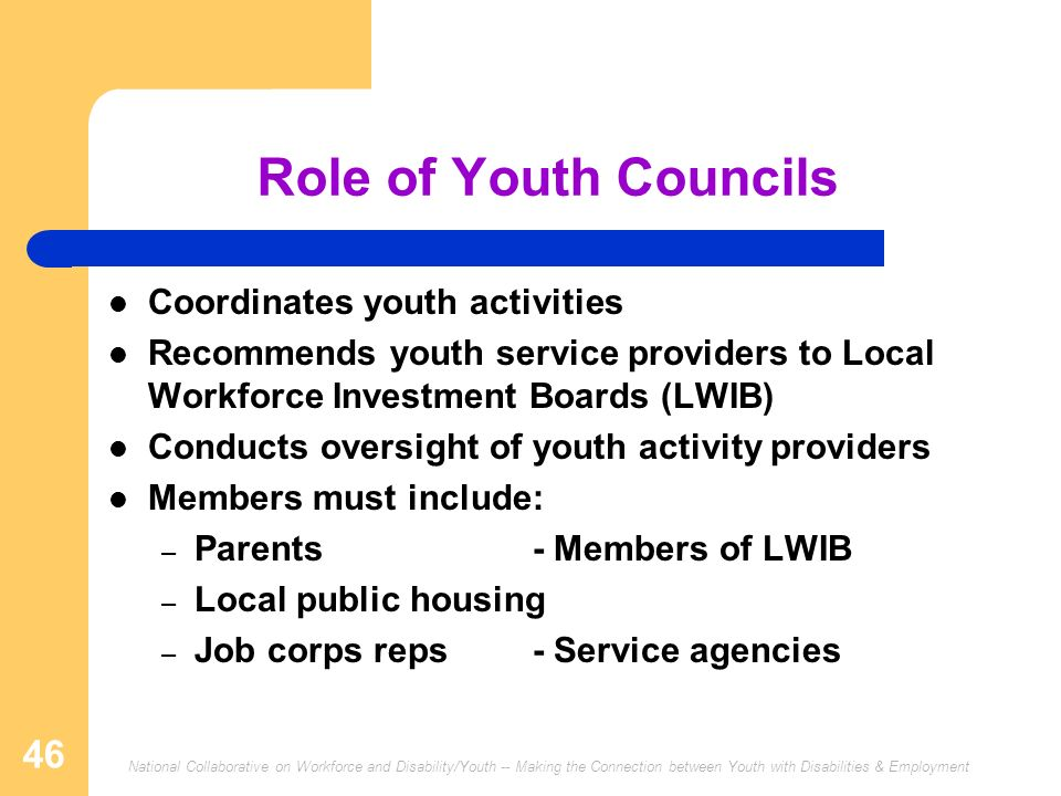 National Collaborative on Workforce and Disability/Youth -- Making the Connection between Youth with Disabilities & Employment 46 Role of Youth Counci