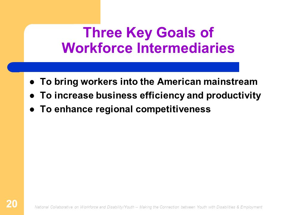National Collaborative on Workforce and Disability/Youth -- Making the Connection between Youth with Disabilities & Employment 20 Three Key Goals of Workforce Intermediaries To bring workers into the American mainstream To increase business efficiency and productivity To enhance regional competitiveness