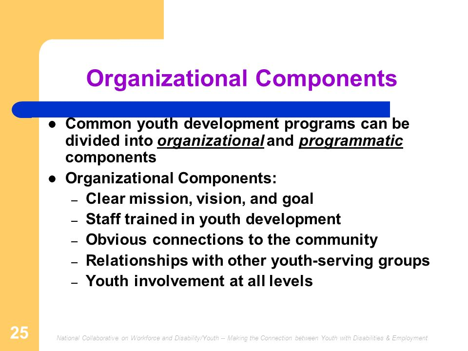 National Collaborative on Workforce and Disability/Youth -- Making the Connection between Youth with Disabilities & Employment 25 Organizational Compo