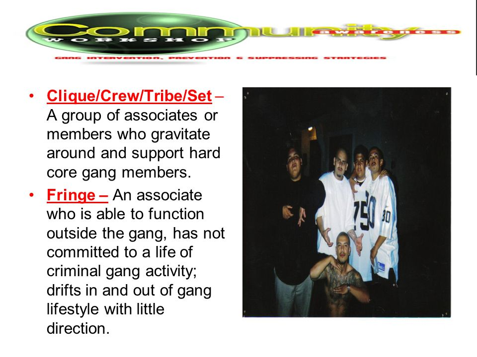 Clique/Crew/Tribe/Set – A group of associates or members who gravitate around and support hard core gang members. Fringe – An associate who is able to