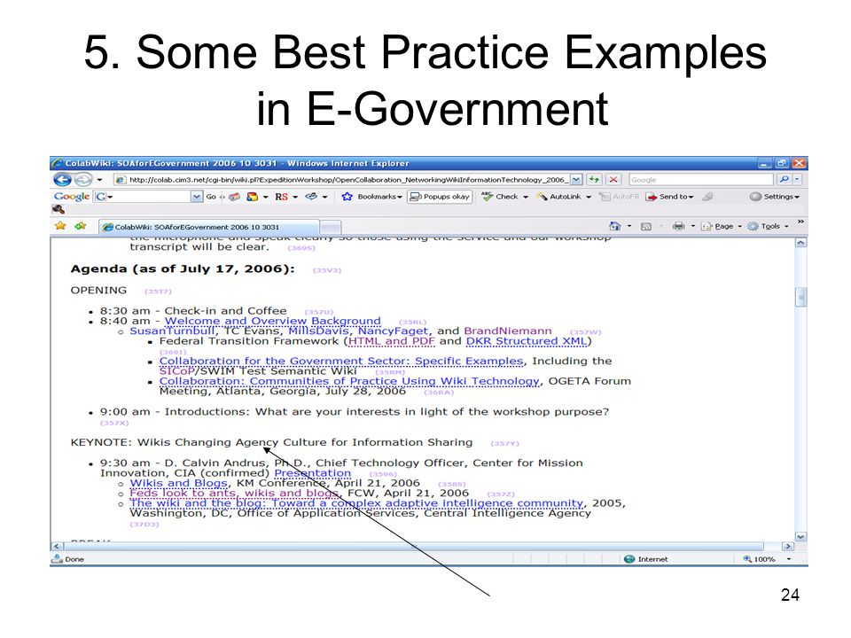 24 5. Some Best Practice Examples in E-Government