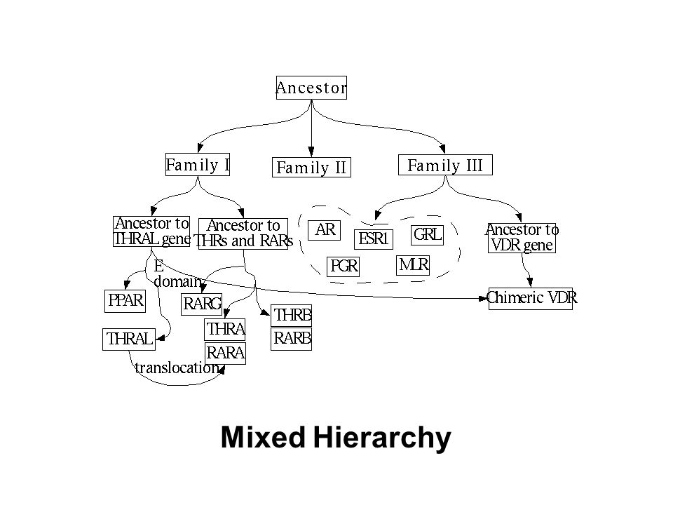 Mixed Hierarchy