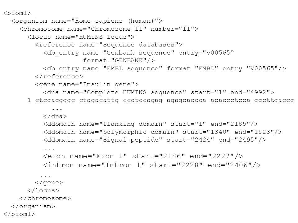 Element Hierarchy XML Element Hierarchy