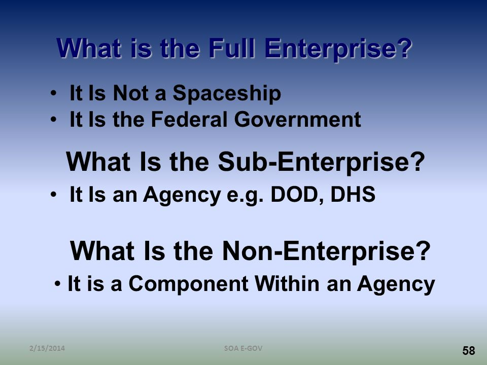 58 What is the Full Enterprise? It Is Not a Spaceship It Is the Federal Government What Is the Sub-Enterprise? It Is an Agency e.g. DOD, DHS What Is t