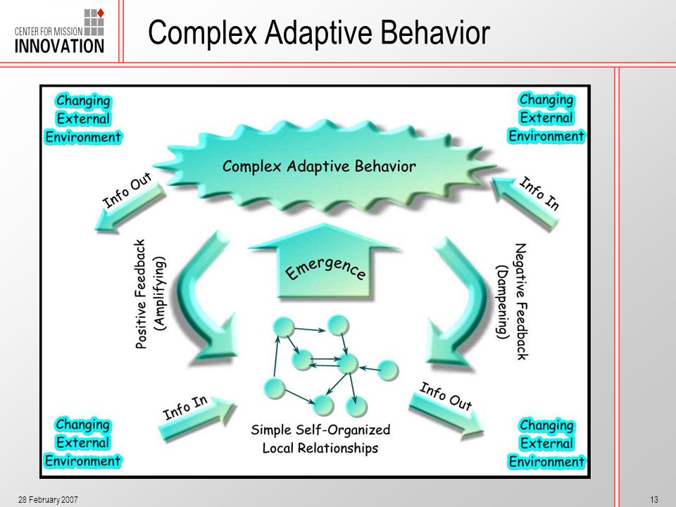 28 February 200713 Complex Adaptive Behavior