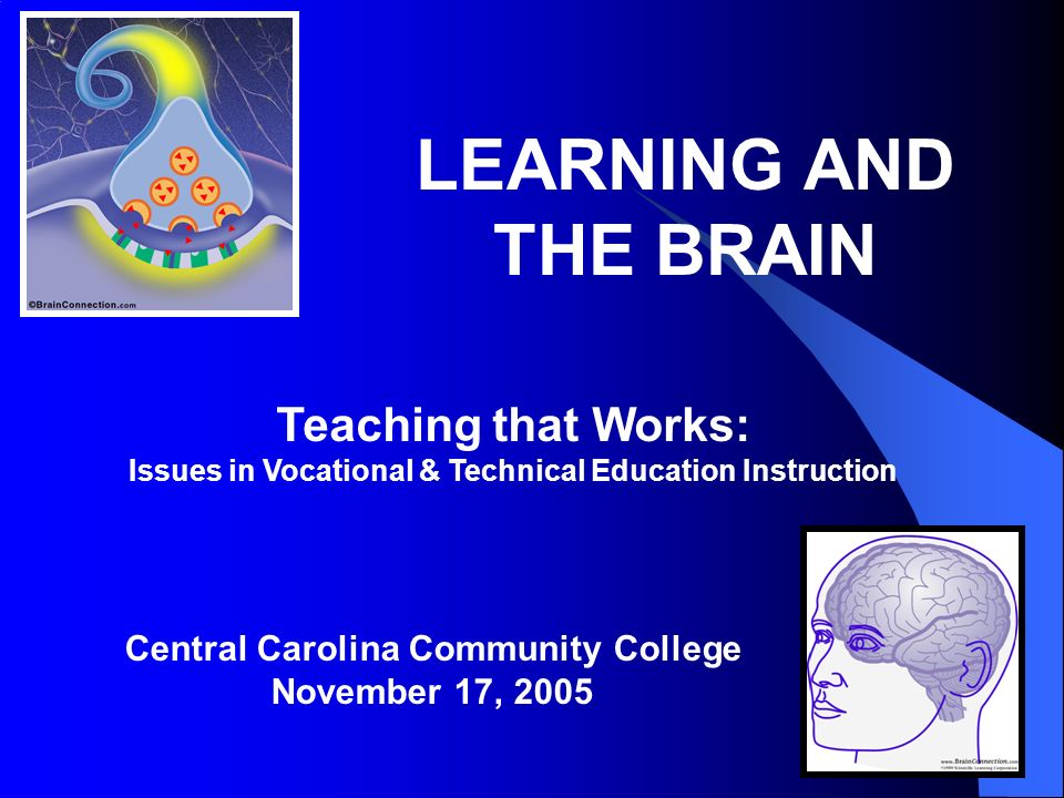 LEARNING AND THE BRAIN Teaching that Works: Issues in Vocational & Technical Education Instruction Central Carolina Community College November 17, 2005