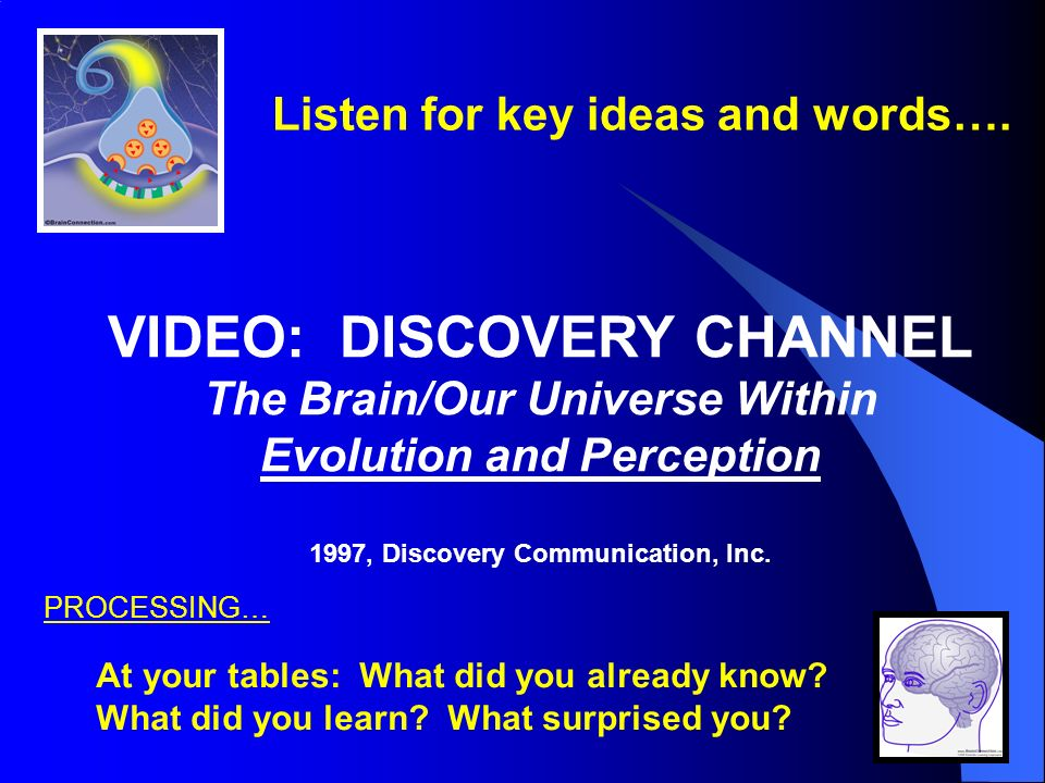 VIDEO: DISCOVERY CHANNEL The Brain/Our Universe Within Evolution and Perception 1997, Discovery Communication, Inc.