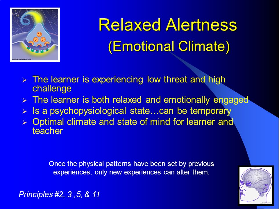 Relaxed Alertness (Emotional Climate) The learner is experiencing low threat and high challenge The learner is both relaxed and emotionally engaged Is a psychopysiological state…can be temporary Optimal climate and state of mind for learner and teacher Once the physical patterns have been set by previous experiences, only new experiences can alter them.