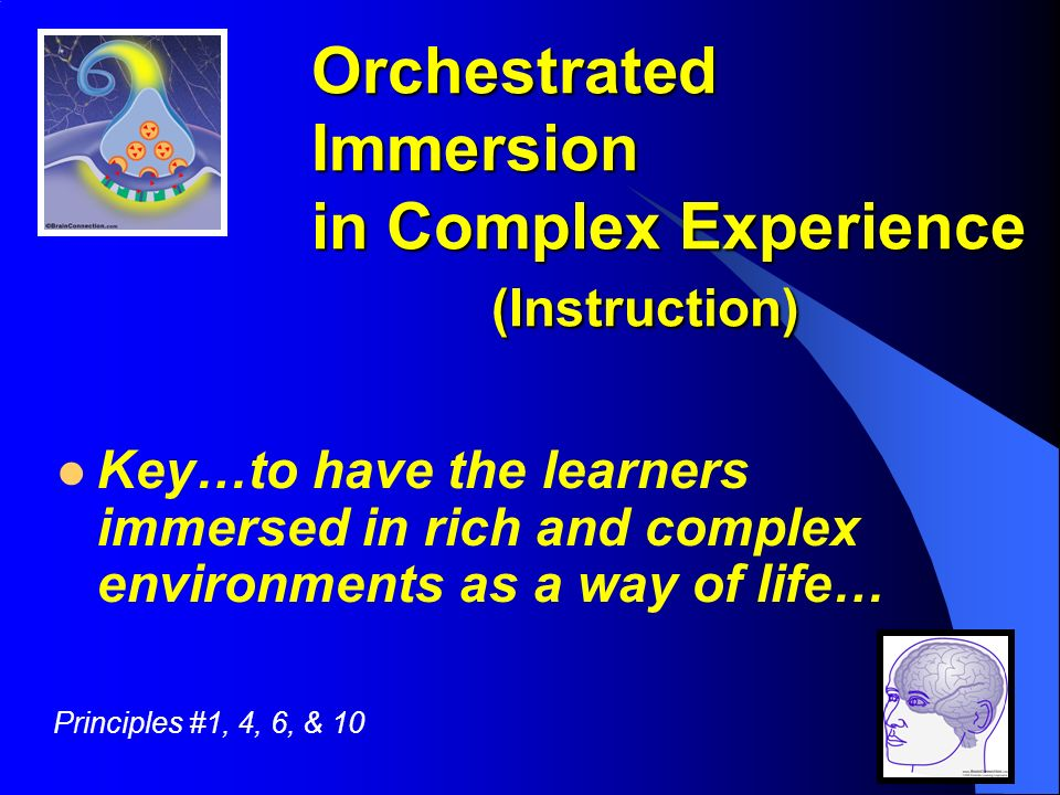 Creative Sources Orchestrated Immersion in Complex Experience (Instruction) Key…to have the learners immersed in rich and complex environments as a way of life… Principles #1, 4, 6, & 10