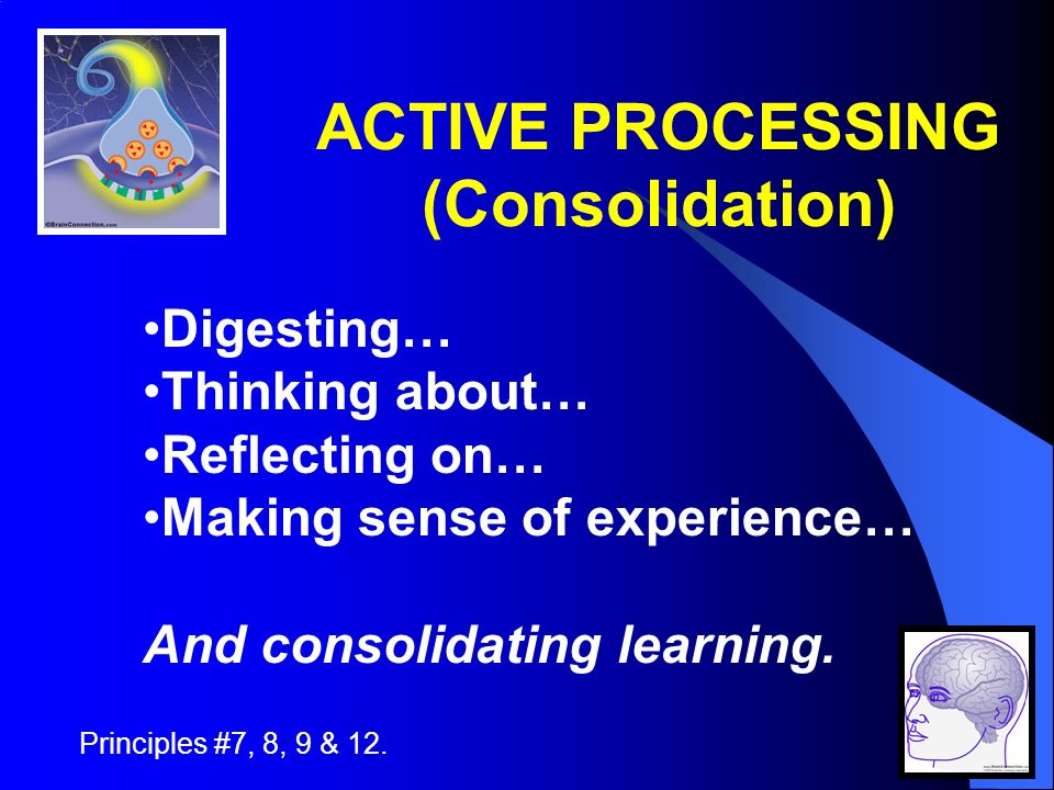 ACTIVE PROCESSING (Consolidation) Principles #7, 8, 9 & 12.