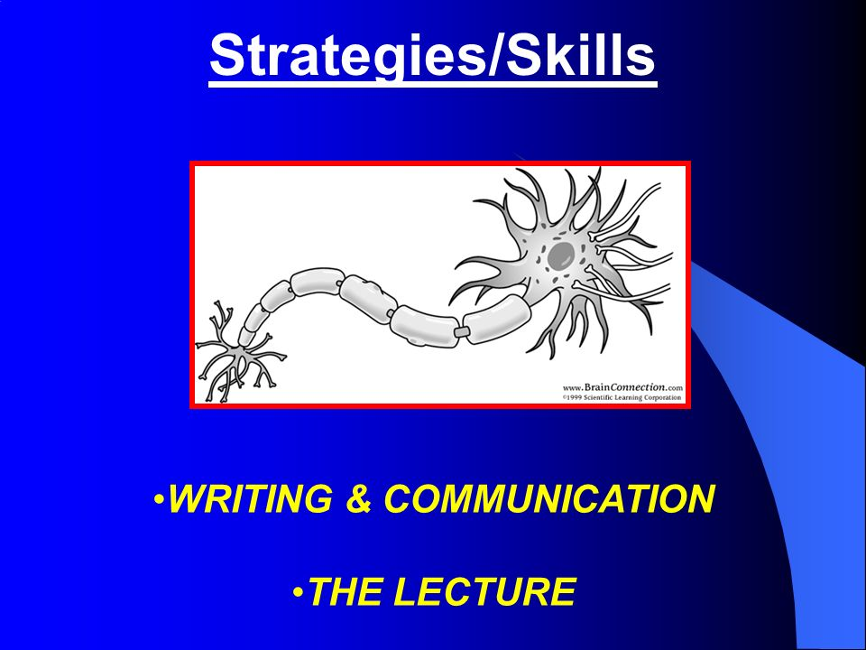 Strategies/Skills WRITING & COMMUNICATION THE LECTURE