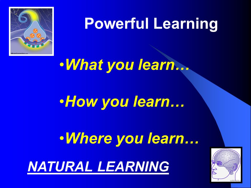 Powerful Learning What you learn… How you learn… Where you learn… NATURAL LEARNING