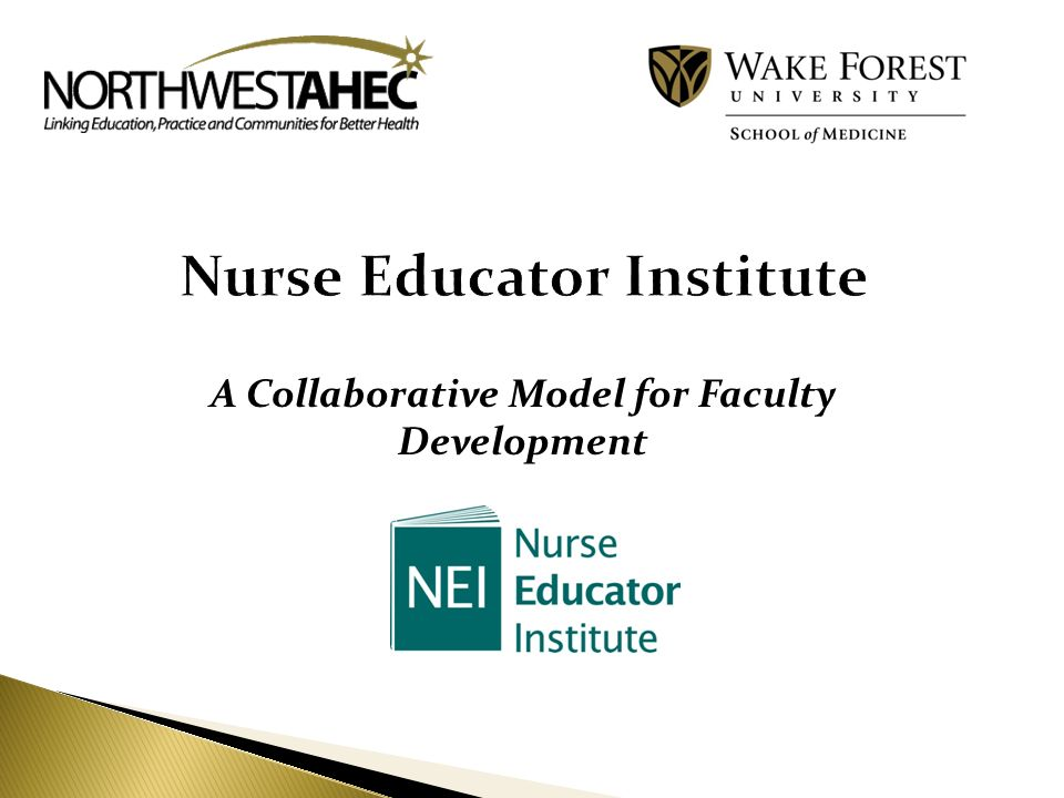 A Collaborative Model for Faculty Development