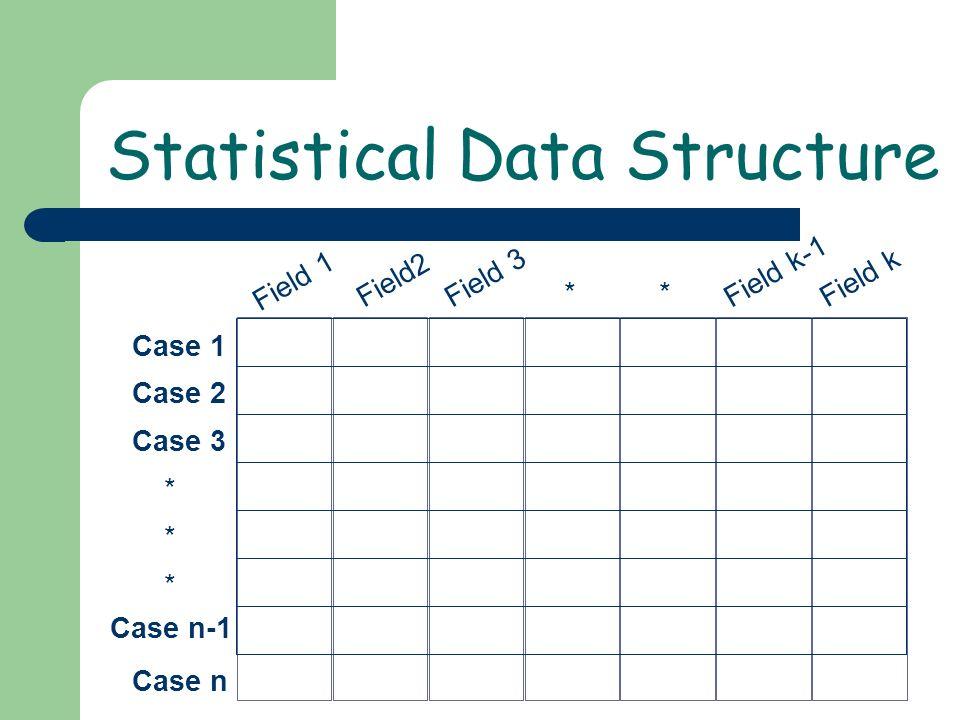 Case 1 Case 2 Case 3 * Case n * * Field 1 * Field2 Field 3 * Field k-1 Field k Case n-1 Statistical Data Structure