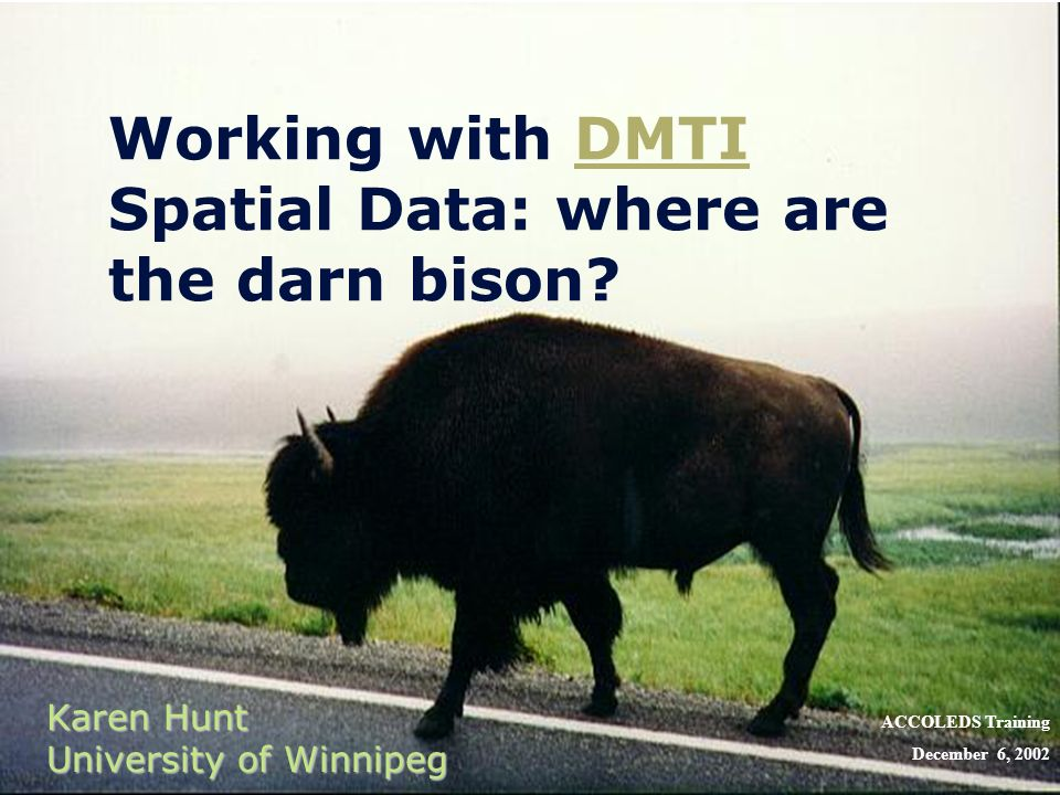 Working with DMTI Spatial Data: where are the darn bison?DMTI Karen Hunt University of Winnipeg ACCOLEDS Training December 6, 2002