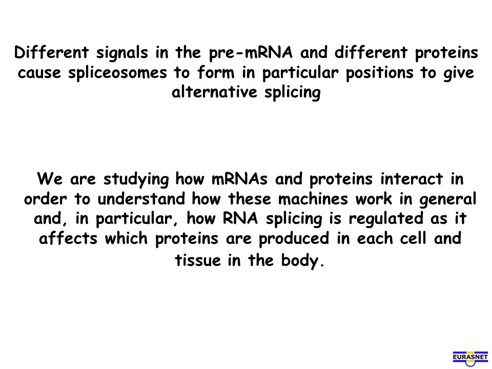 Different signals in the pre-mRNA and different proteins cause spliceosomes to form in particular positions to give alternative splicing We are studyi