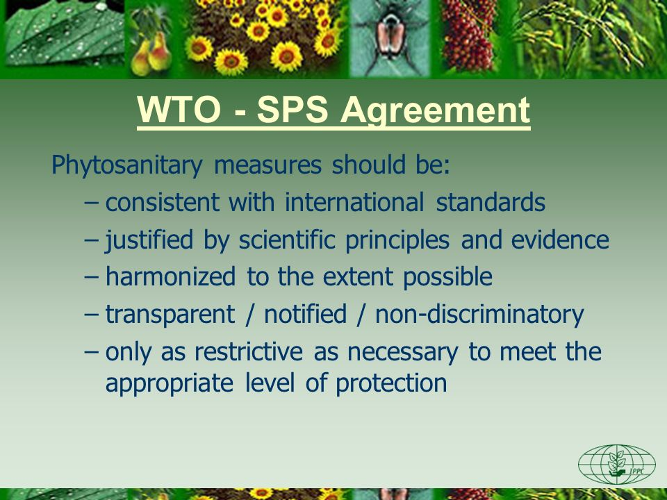 WTO - SPS Agreement Phytosanitary measures should be: –consistent with international standards –justified by scientific principles and evidence –harmo