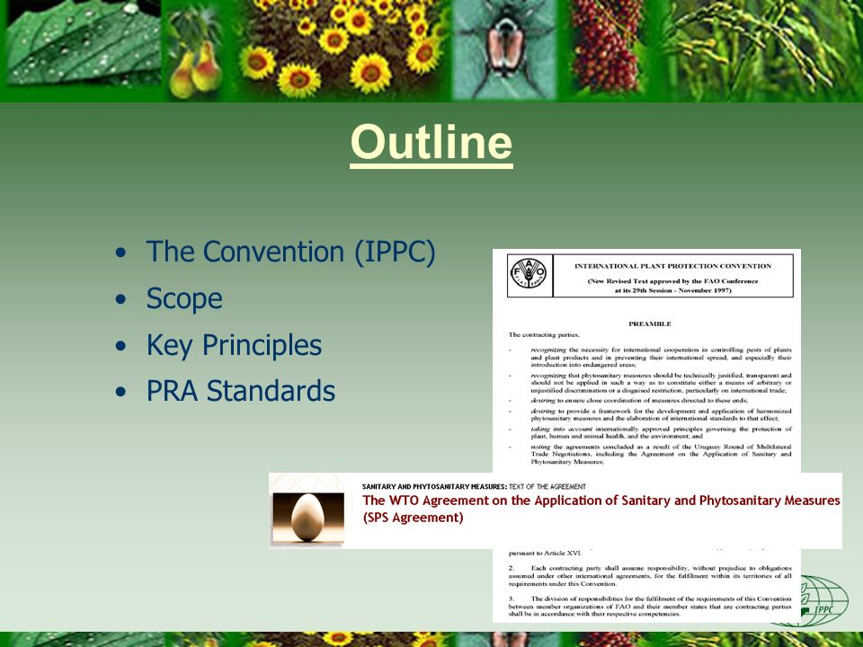 IPPC IPPC is global Aim is to protect plants, prevent spread of pests, promote trade Measures applied only when necessary, technically justified, no more restrictive than necessary, non-discriminatory, transparent PRA supports principles of IPPC ISPMs provide guidance