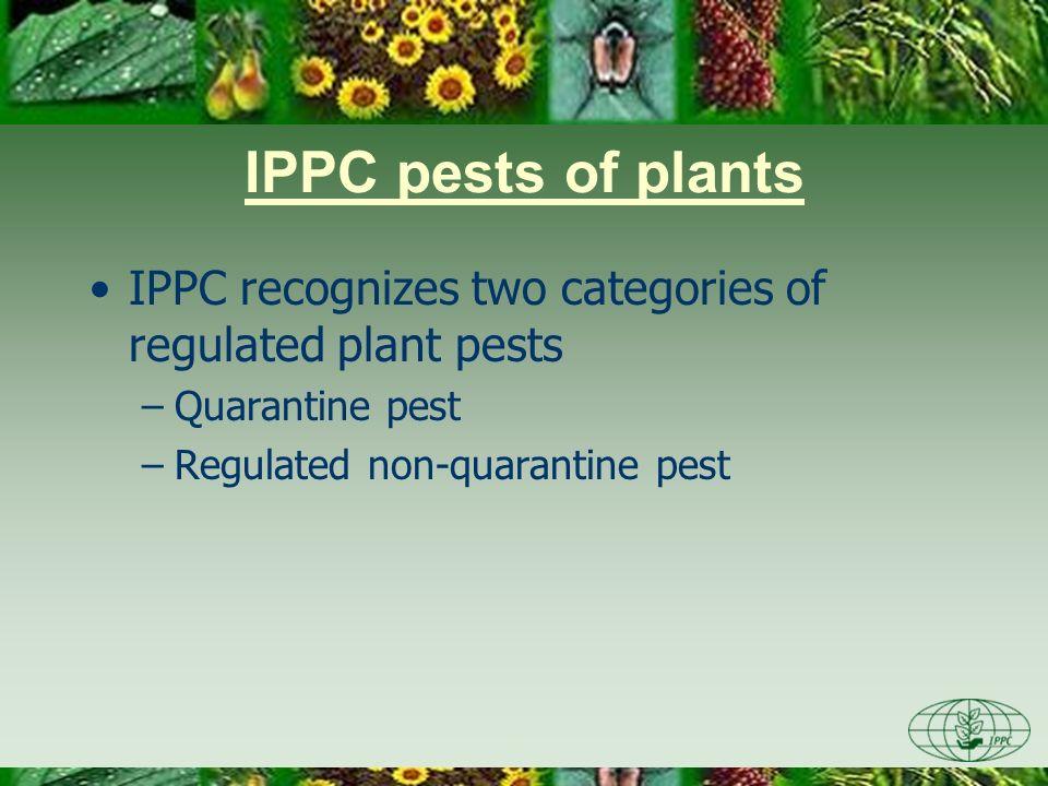 IPPC pests of plants IPPC recognizes two categories of regulated plant pests –Quarantine pest –Regulated non-quarantine pest