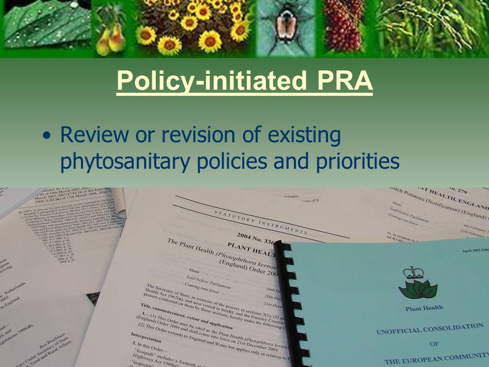 Policy-initiated PRA Review or revision of existing phytosanitary policies and priorities