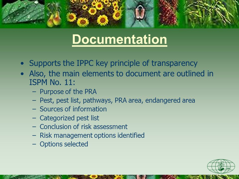 Documentation Supports the IPPC key principle of transparency Also, the main elements to document are outlined in ISPM No. 11: –Purpose of the PRA –Pe