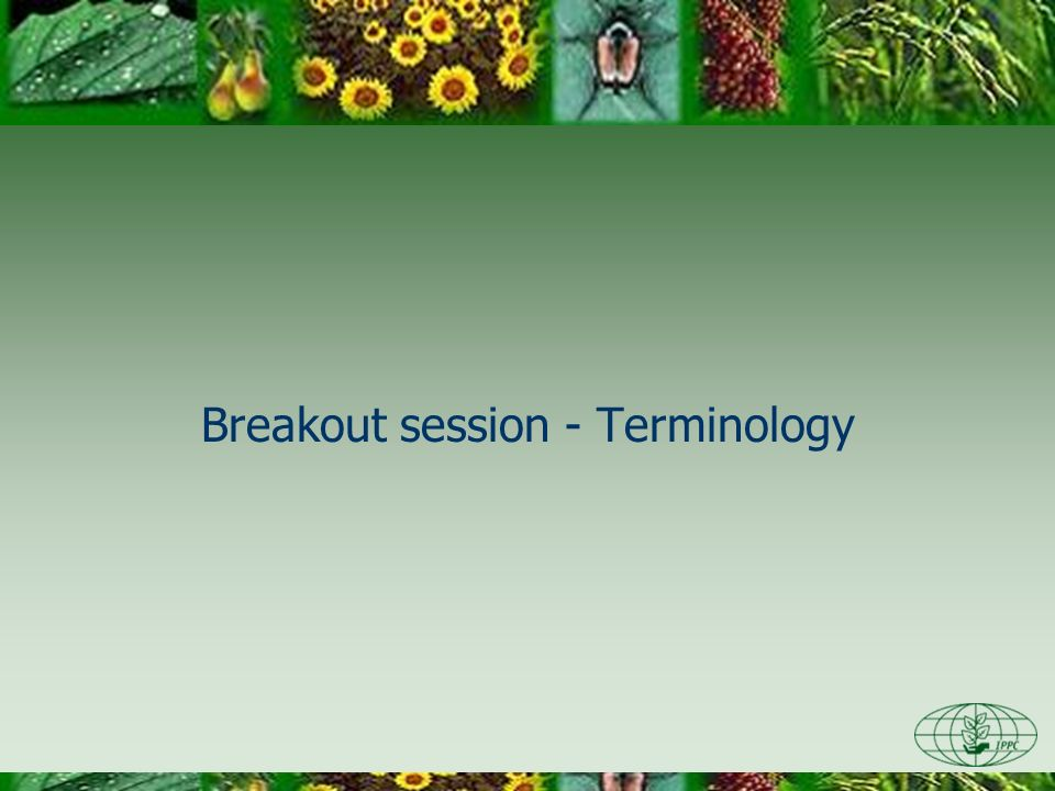 Breakout session - Terminology