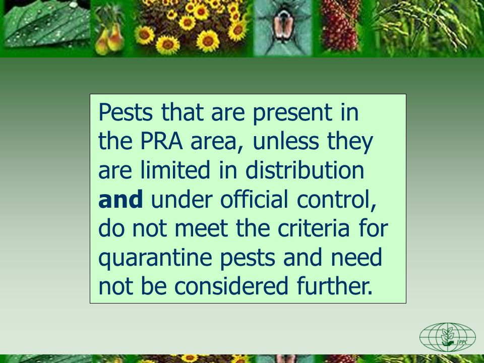 Pests that are present in the PRA area, unless they are limited in distribution and under official control, do not meet the criteria for quarantine pe