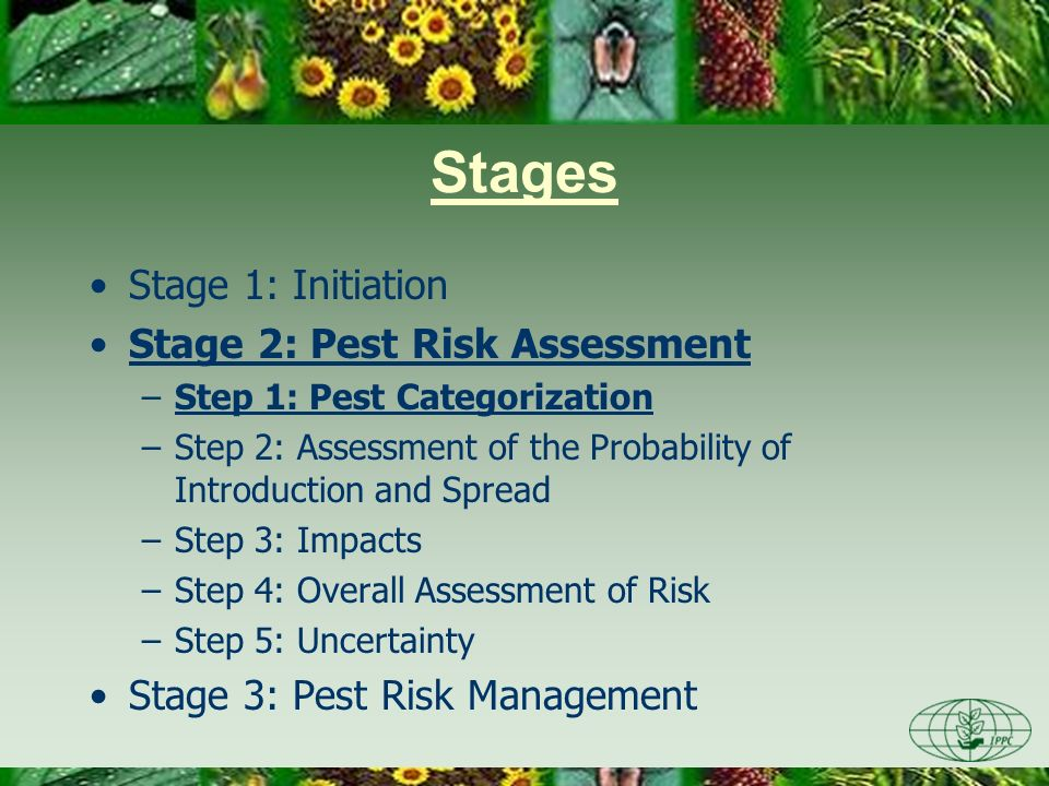 Stages Stage 1: Initiation Stage 2: Pest Risk Assessment –Step 1: Pest Categorization –Step 2: Assessment of the Probability of Introduction and Sprea