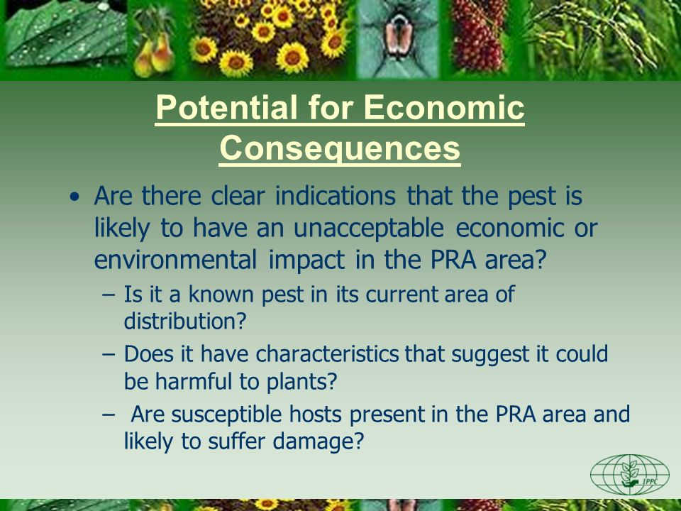 Potential for Economic Consequences Are there clear indications that the pest is likely to have an unacceptable economic or environmental impact in th
