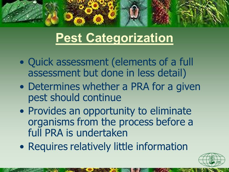 Quick assessment (elements of a full assessment but done in less detail) Determines whether a PRA for a given pest should continue Provides an opportu