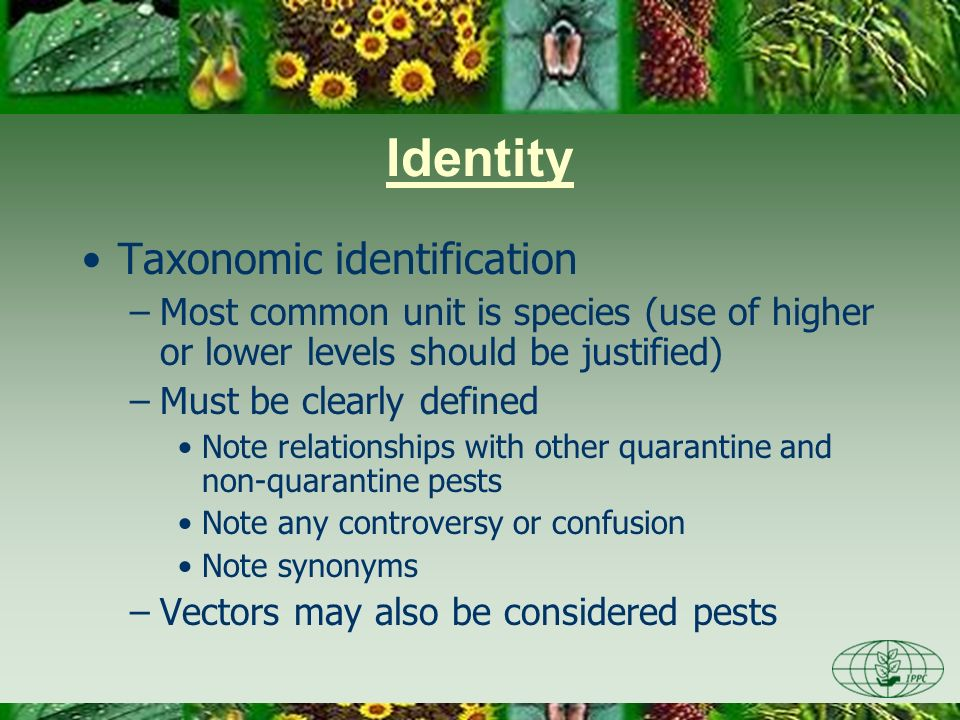 Identity Taxonomic identification –Most common unit is species (use of higher or lower levels should be justified) –Must be clearly defined Note relat