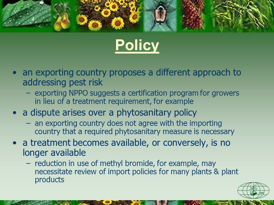 Policy an exporting country proposes a different approach to addressing pest risk –exporting NPPO suggests a certification program for growers in lieu of a treatment requirement, for example a dispute arises over a phytosanitary policy –an exporting country does not agree with the importing country that a required phytosanitary measure is necessary a treatment becomes available, or conversely, is no longer available –reduction in use of methyl bromide, for example, may necessitate review of import policies for many plants & plant products