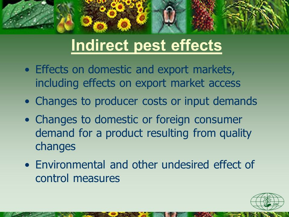 Indirect pest effects Effects on domestic and export markets, including effects on export market access Changes to producer costs or input demands Cha
