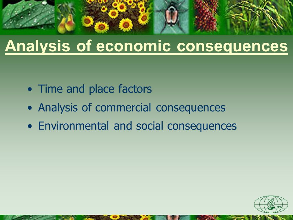 Analysis of economic consequences Time and place factors Analysis of commercial consequences Environmental and social consequences
