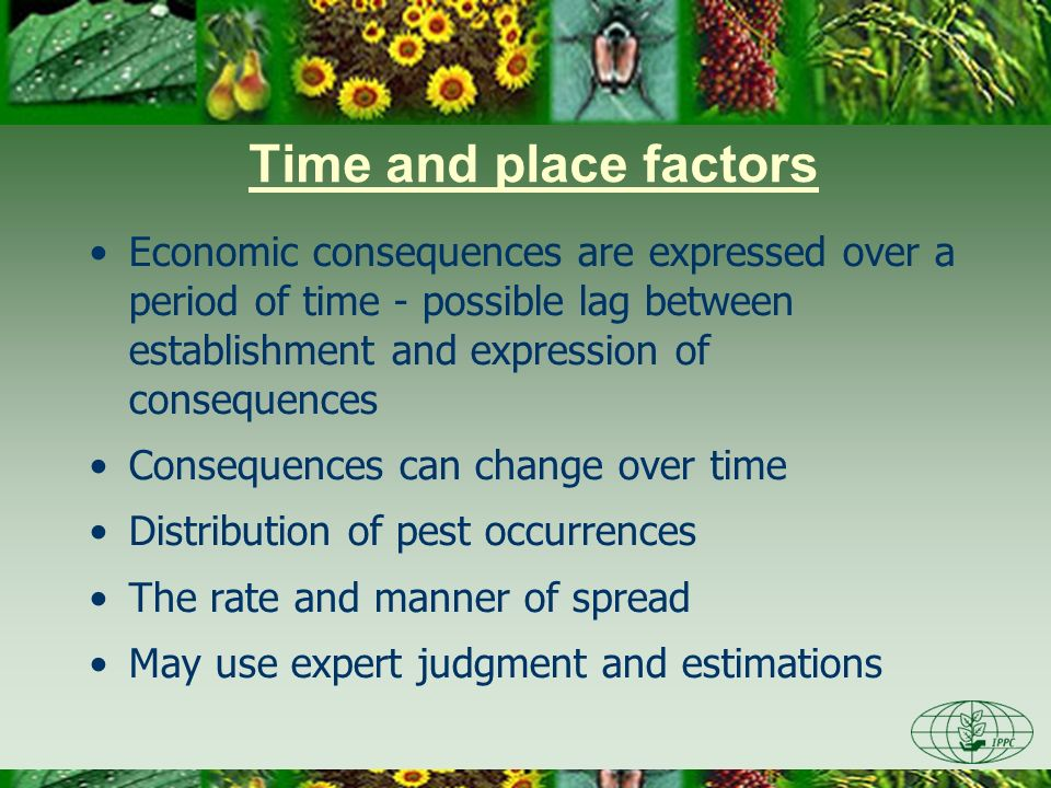 Time and place factors Economic consequences are expressed over a period of time - possible lag between establishment and expression of consequences C