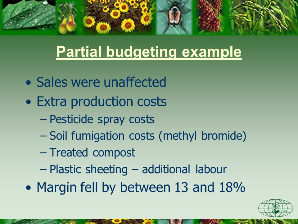 Partial budgeting example Sales were unaffected Extra production costs –Pesticide spray costs –Soil fumigation costs (methyl bromide) –Treated compost
