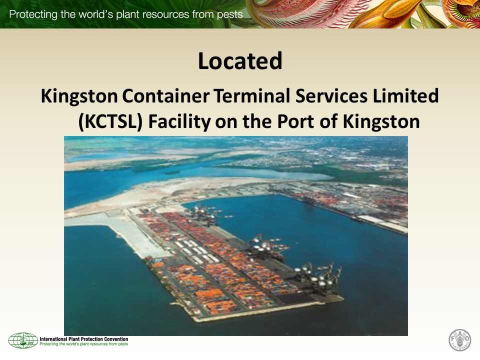 Located Kingston Container Terminal Services Limited (KCTSL) Facility on the Port of Kingston