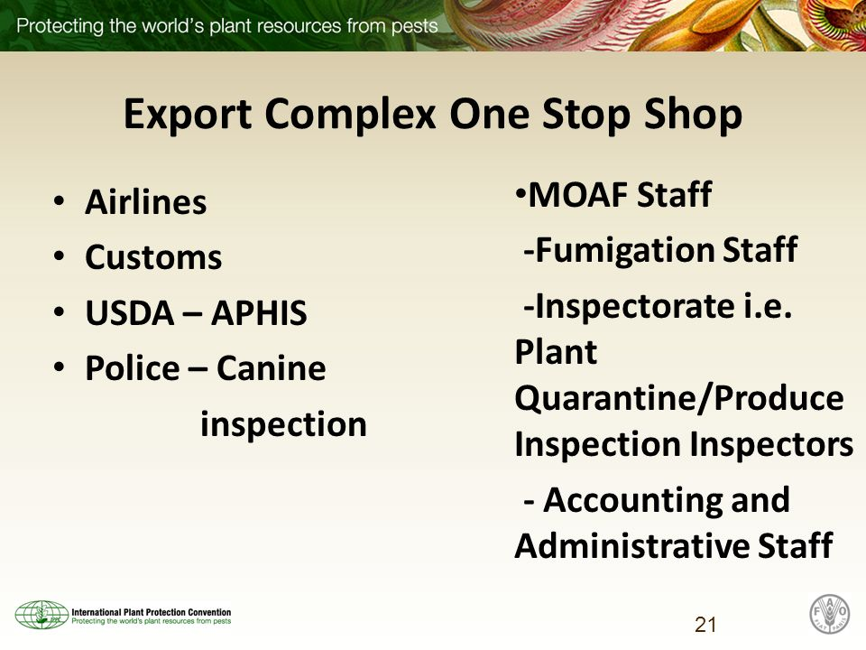 Export Complex One Stop Shop Airlines Customs USDA – APHIS Police – Canine inspection MOAF Staff -Fumigation Staff -Inspectorate i.e.