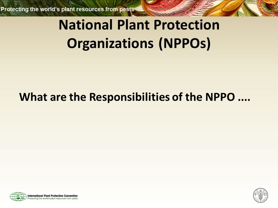National Plant Protection Organizations (NPPOs) What are the Responsibilities of the NPPO....