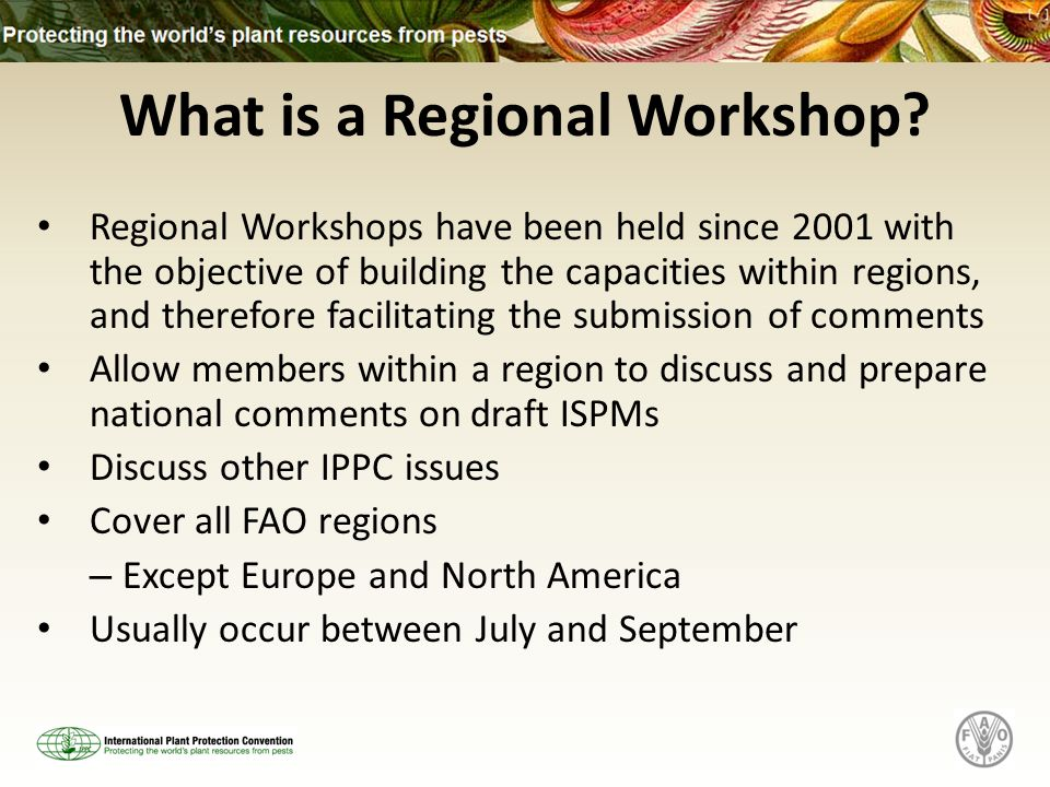 What is a Regional Workshop? Regional Workshops have been held since 2001 with the objective of building the capacities within regions, and therefore