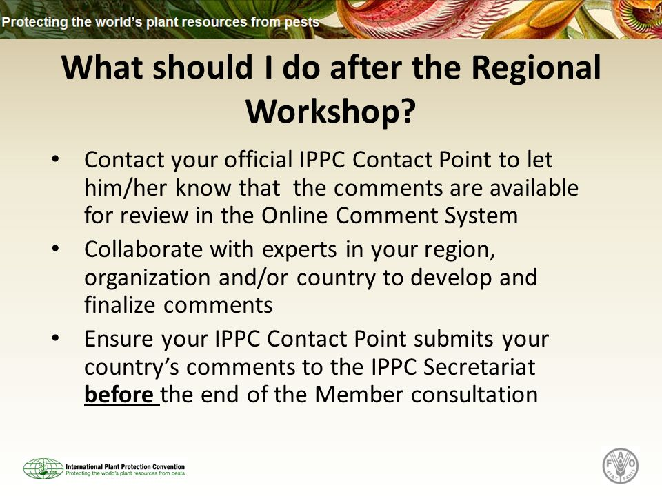 What should I do after the Regional Workshop? Contact your official IPPC Contact Point to let him/her know that the comments are available for review