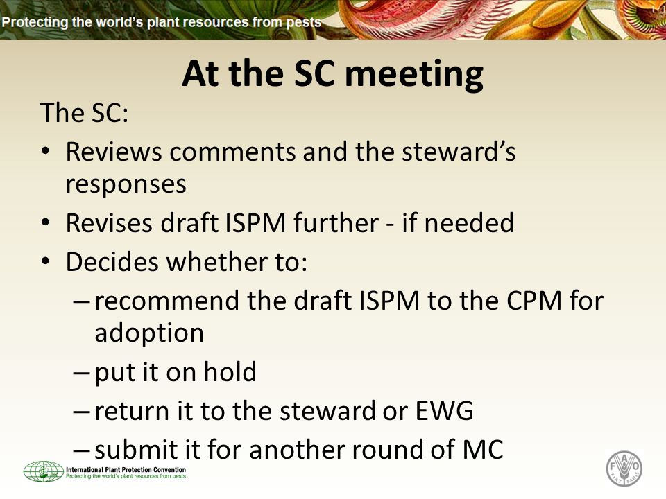 At the SC meeting The SC: Reviews comments and the stewards responses Revises draft ISPM further - if needed Decides whether to: – recommend the draft ISPM to the CPM for adoption – put it on hold – return it to the steward or EWG – submit it for another round of MC