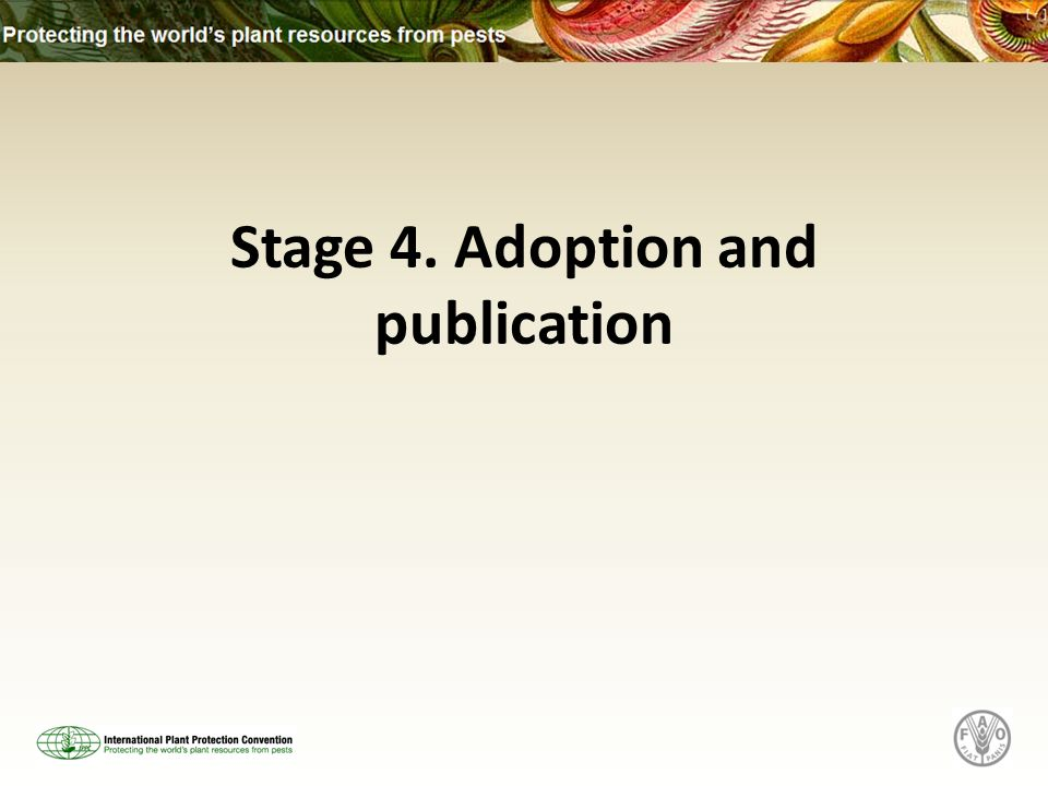 Stage 4. Adoption and publication
