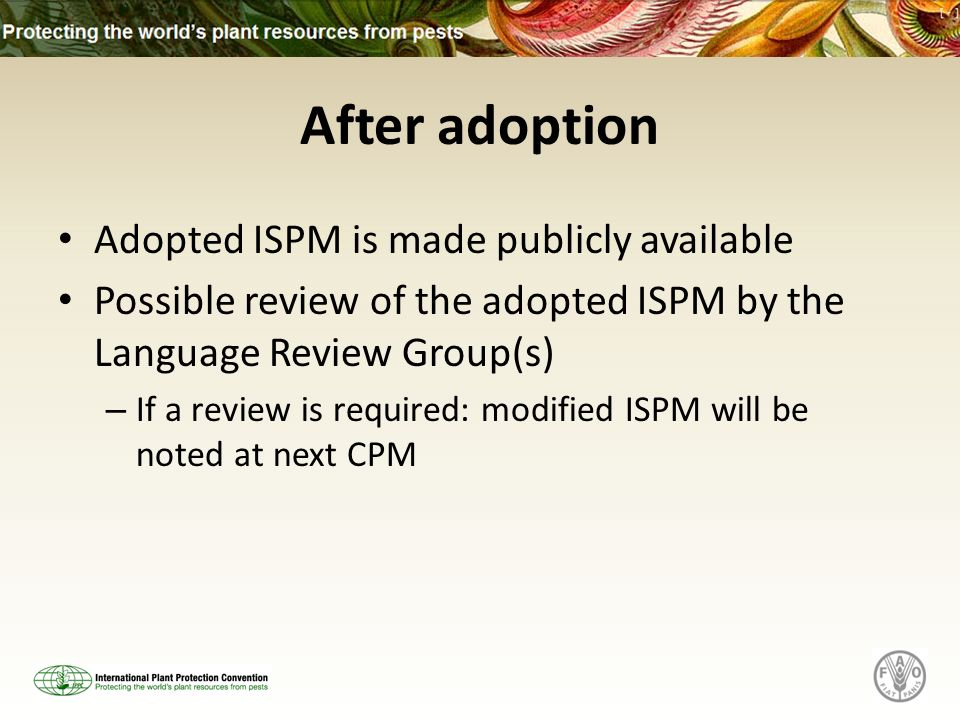 After adoption Adopted ISPM is made publicly available Possible review of the adopted ISPM by the Language Review Group(s) – If a review is required: