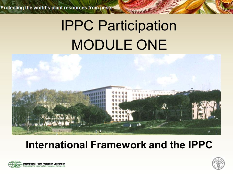 What this Module Covers The BIG international picture - both trade and environment aspects How the different international standard setting bodies fit together How other international plant health bodies fit the framework IPPC and its operating bodies and where to participate
