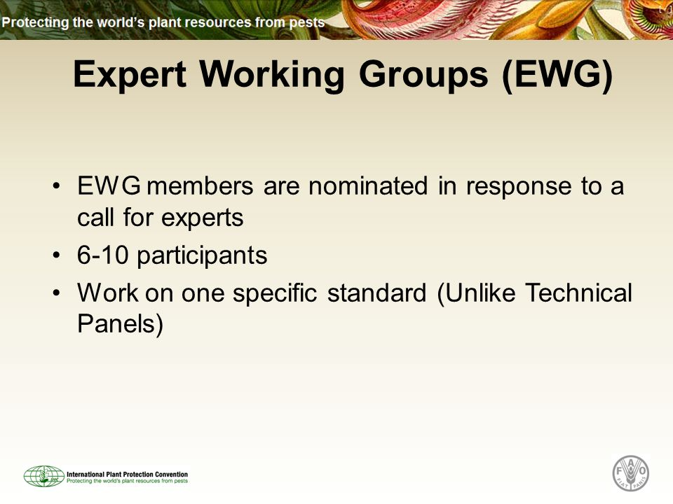 Expert Working Groups (EWG) EWG members are nominated in response to a call for experts 6-10 participants Work on one specific standard (Unlike Techni