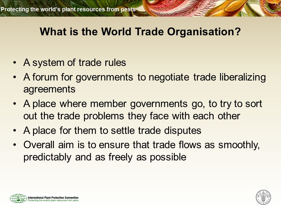 What is the World Trade Organisation.